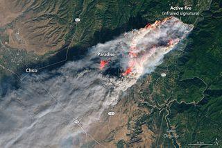 Incendios mortíferos en California: 9 muertos y 35 desaparecidos