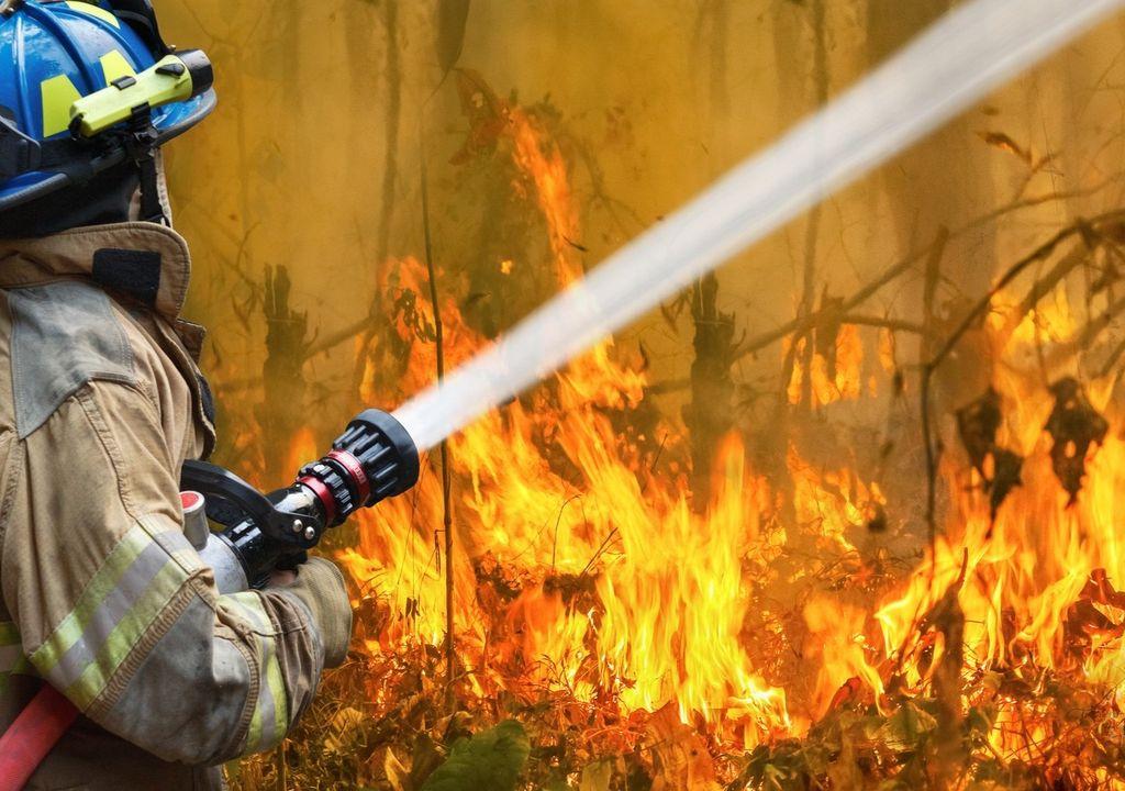 Incêndios na Austrália, wild fires