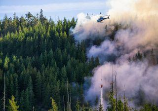 Incêndios não dão tréguas na América do Norte