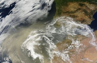 Incidencia del polvo sahariano en las microalgas