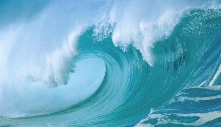 Los océanos se están volviendo más ácidos con el tiempo