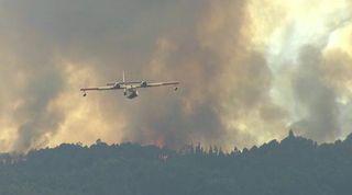 Información sobre los incendios forestales de 2017
