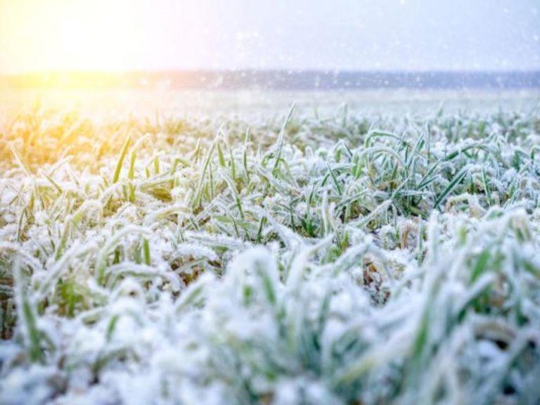Ola polar aire polar frío heladas nieve Argentina