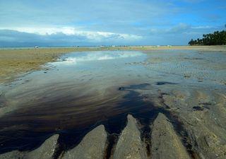 Investigações sobre a origem do óleo no Nordeste continuam