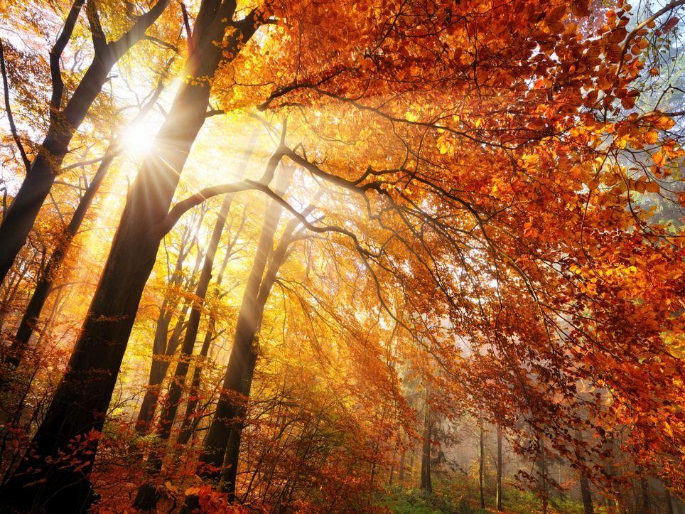Goldene Oktober gab es schon immer