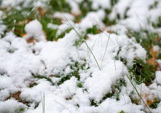Jetzt auch noch Schneefall - der Winter gibt nicht auf!