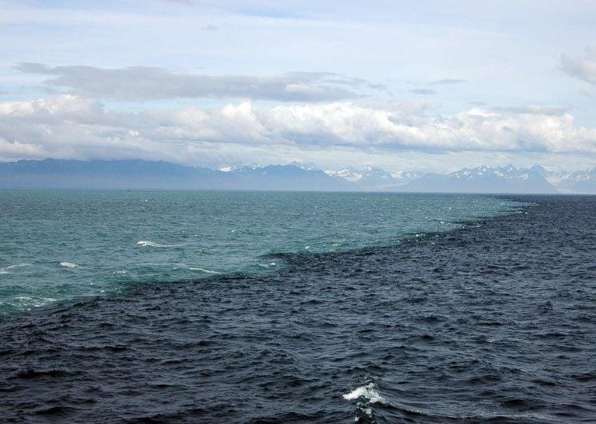 ¿Por qué no se mezclan nada más entrar en contacto? Una de las razones: la diferencia de salinidad. El agua de color oscuro es la del mar, la salada; y la de color claro la del glaciar, la dulce. Fuente: Kennet W. Bruland.
