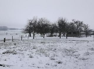 Jusqu'à -10°C, neige en plaine : une arrivée fracassante de l'hiver !
