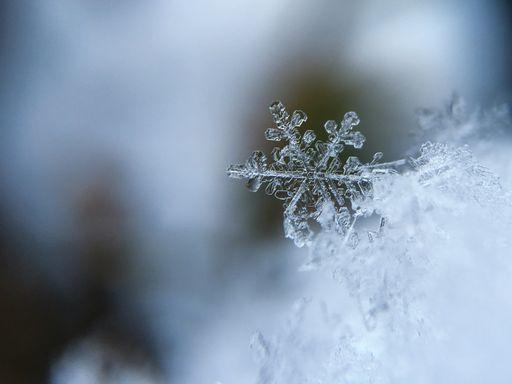 Kepler y los copos de nieve