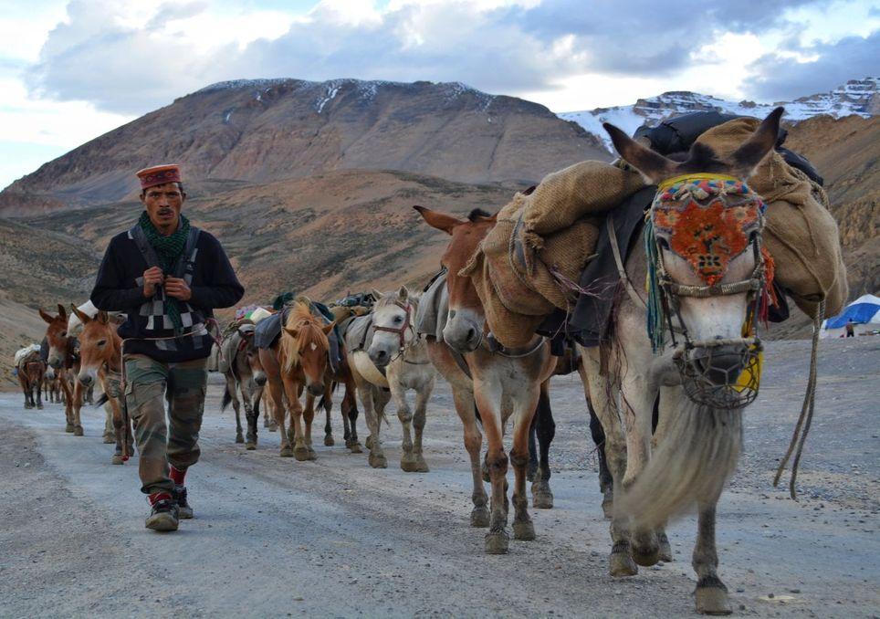 Alterações climáticas e migração: o exemplo dos Himalaias