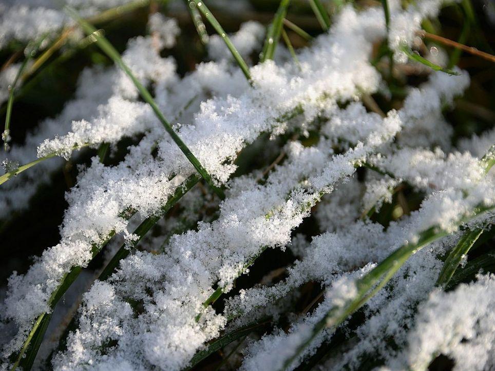 Kommt bald der erste Schnee?