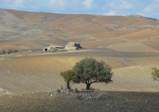 L'ondata di caldo del 1999, quando in Sicilia si sfondarono i +48°C