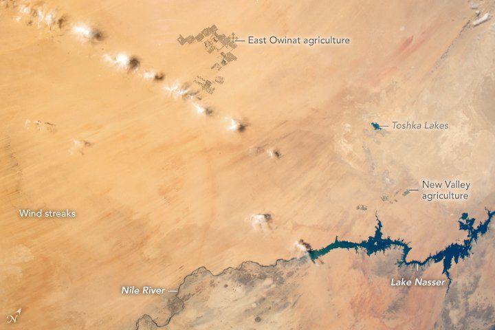 La Agricultura En El Desierto Occidental De Egipto