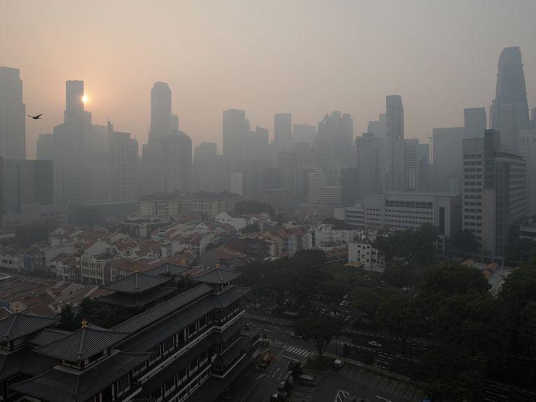 La contaminación del aire afecta el intelecto