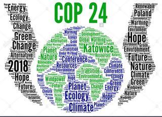 La COP 24 en números