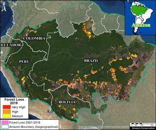 La deforestación de la Amazonía brasileña: nuevo récord en mayo 2020