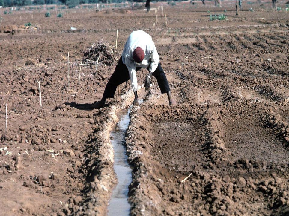 Bajo las consecuencias del cambio climático la pobreza se acentuará en el país.