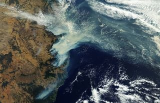 La furia de los incendios forestales en Australia