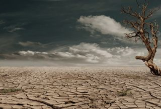 La inacción climática