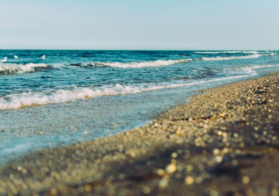 Calor, verano, vacaciones, Pronóstico