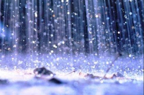 La Mitad De La Precipitación Anual Del Mundo Cae En Solo 12 Días