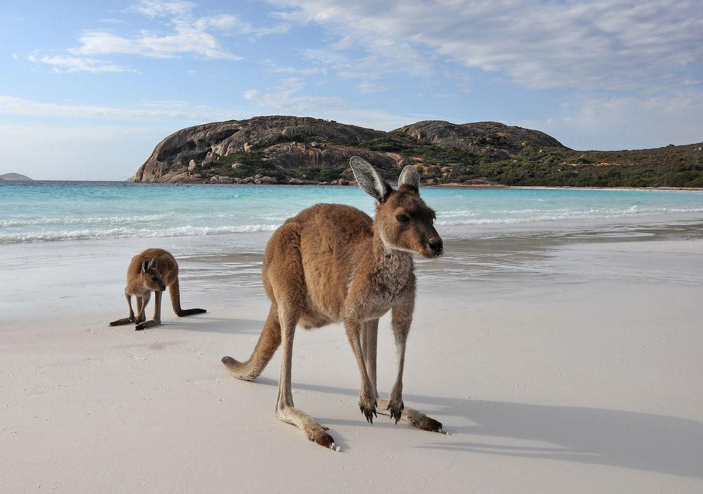 Océano Pacífico Australia