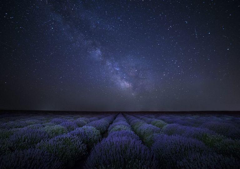 cielo, estrellas, astronomia