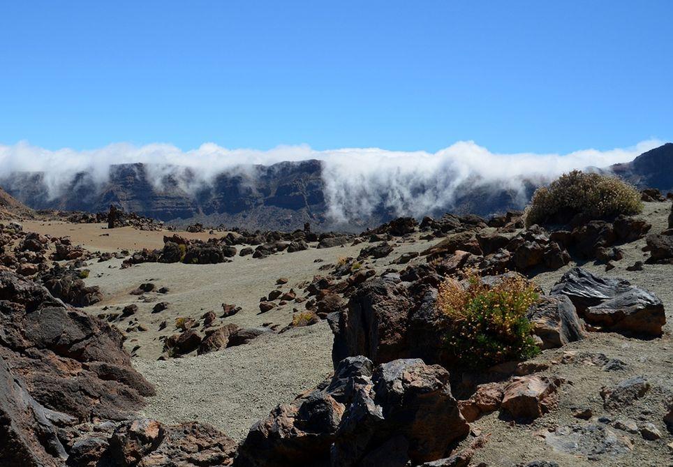 Tenerife niebla