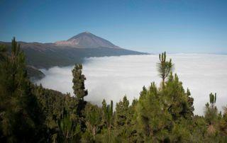 La principal amenaza de los Parques Nacionales, los incendios forestales