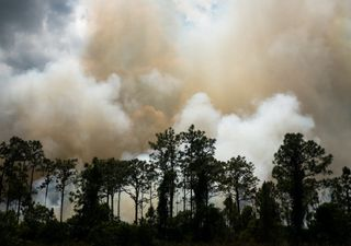 La sequía agrava los incendios