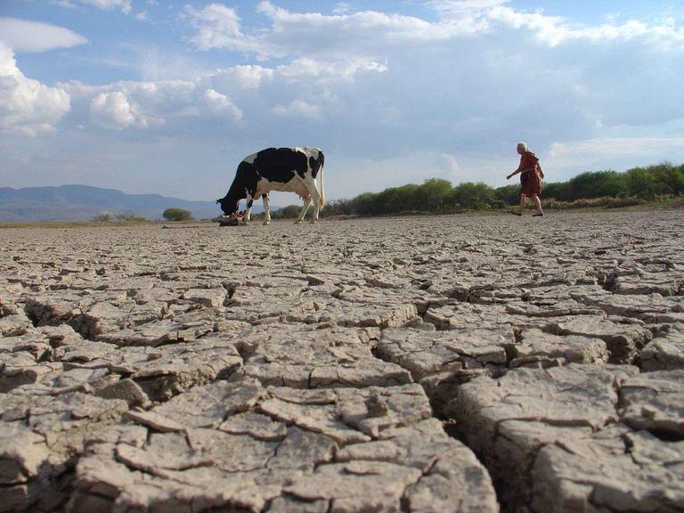 Escasez de lluvias sigue afectando a México.