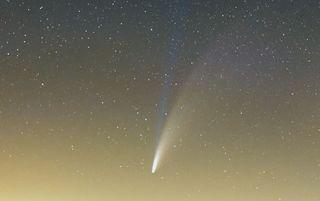 Las bandas sincrónicas del cometa NEOWISE