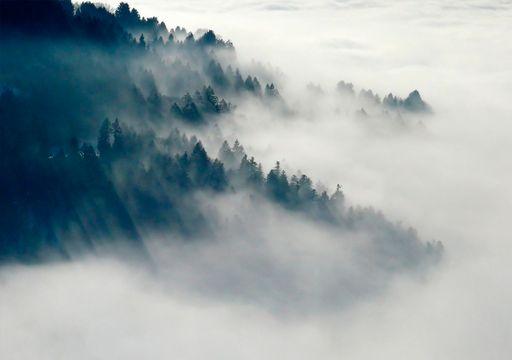 Las bondades de las nieblas