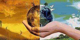 """Las """"plagas"""" del calentamiento global"""