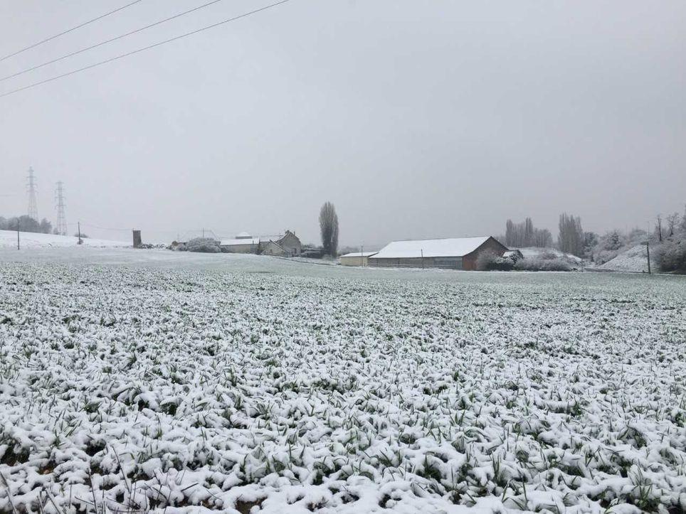 Si le risque de neige demeure incertain pour la semaine prochaine, le froid ne fait désormais plus de doute.