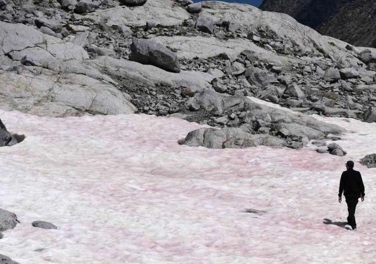 Rose Schnee in den Alpen