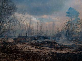 Lluvia en áreas quemadas: un peligro silencioso