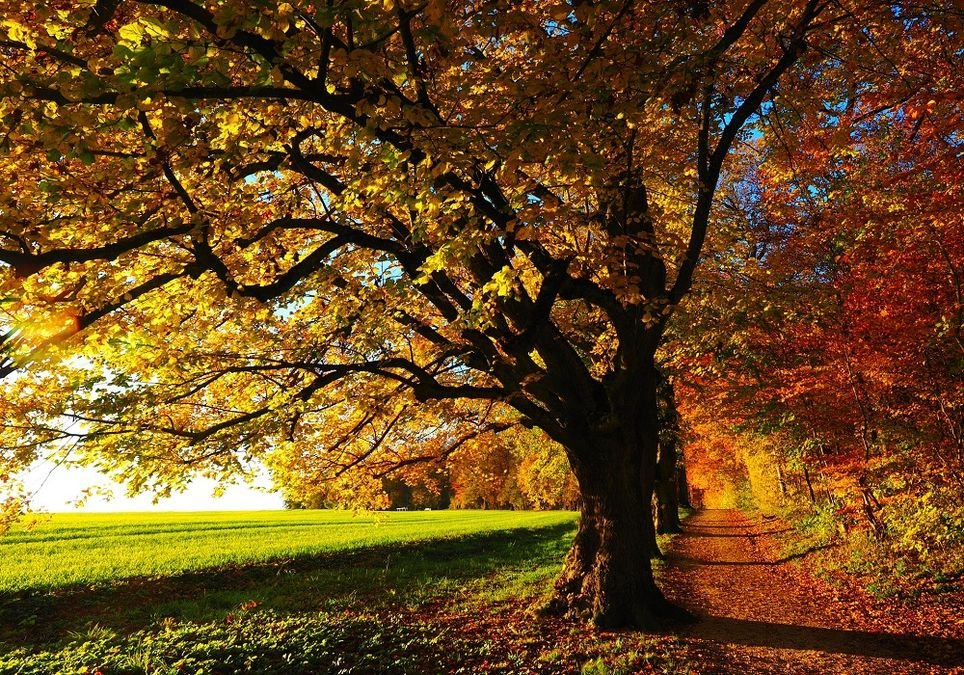 En días claros, la luz saca a relucir aún más las diferentes tonalidades.