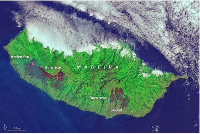 Los Fuegos Carbonizan A Madeira