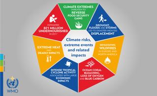 Los impactos del cambio climático resaltan la necesidad de acción en la COP24