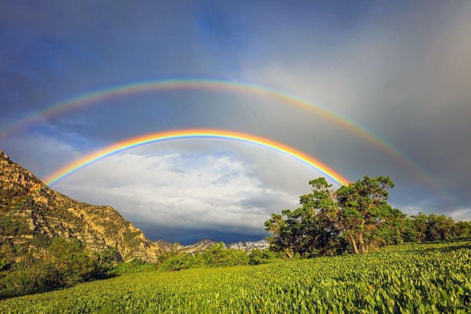 Tiene siete colores el arcoíris?