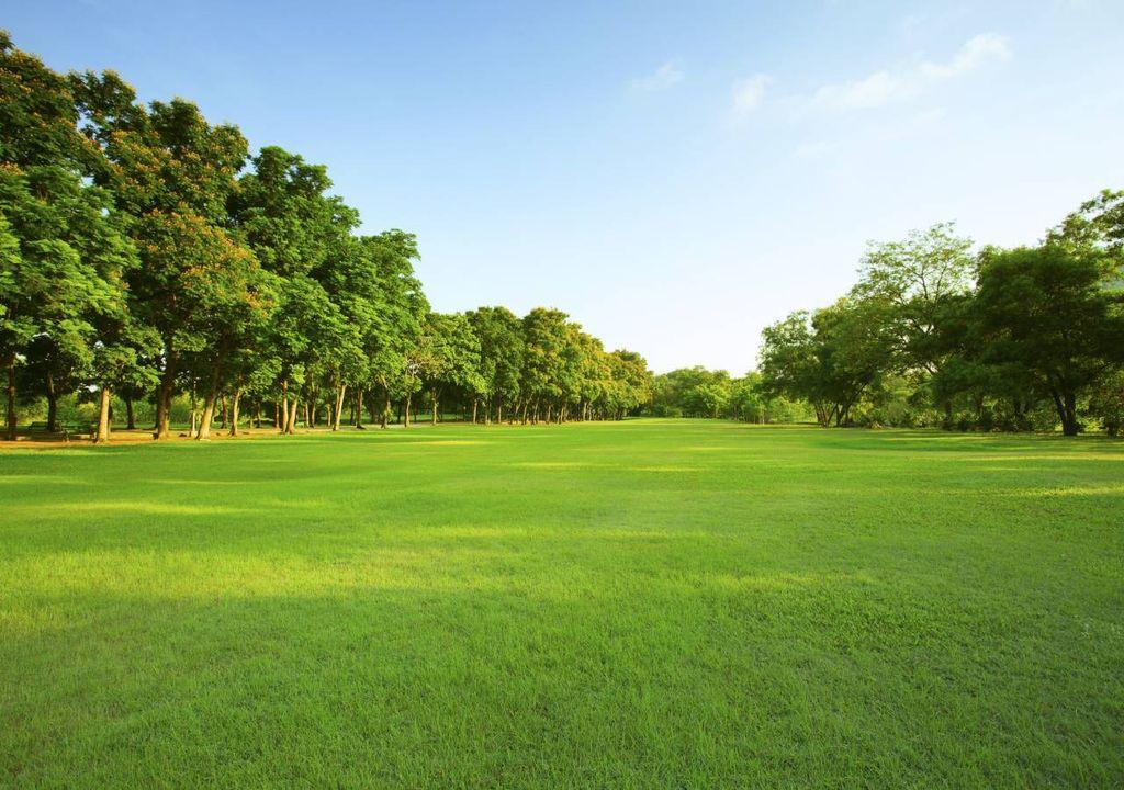Espaços verdes