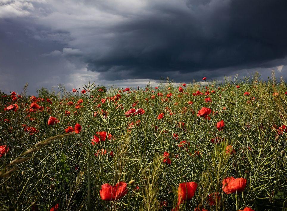 temporale-maggio