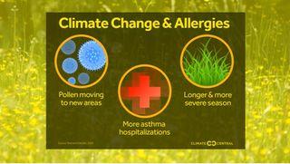 Más CO2, más polen