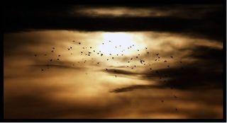 Más fotos del resumen meteofotográfico de Enero 2006