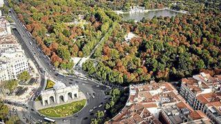 Megaciudades, árboles y polución