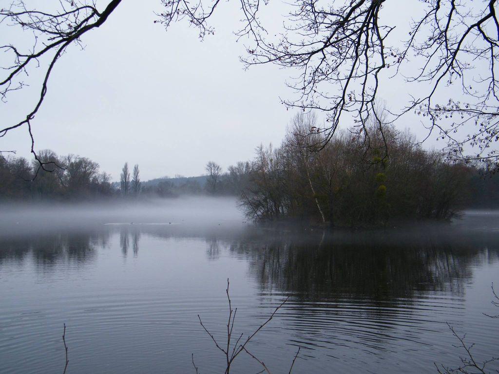 Phénomène fréquent à cette période de l'année, les nuages bas et les brouillards devraient caractériser une partie de ce mois de novembre.