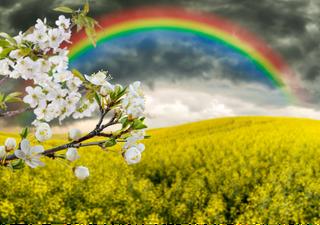 Meteo, anticiclone africano sull'Italia, e poi? La tendenza per Pasqua