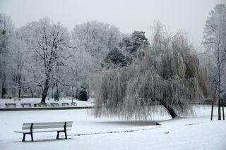 Dernière minute : alerte à la neige dans le nord-est !