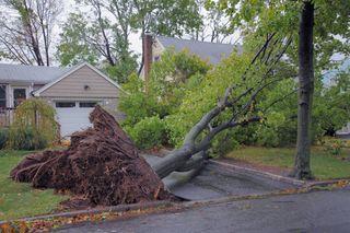 Météo : doit-on redouter de nouvelles tempêtes cette semaine ?
